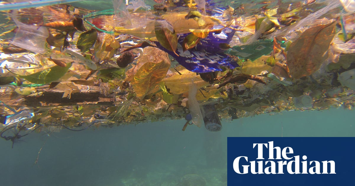 Plastic is literally everywhere': the epidemic attacking