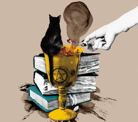 Illustration of books, cat and goblet