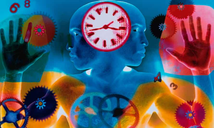 The internal clock is a key feature of life on Earth, one that wired the rotation of the planet into the fabric of our cells over millions of years of evolution.