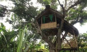 Treehouse at Finca Sarita, a remote farm in Ecuador