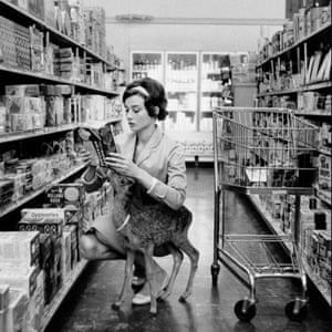 Audrey Hepburn shopping with pet Pippin in Beverly Hills, 1958