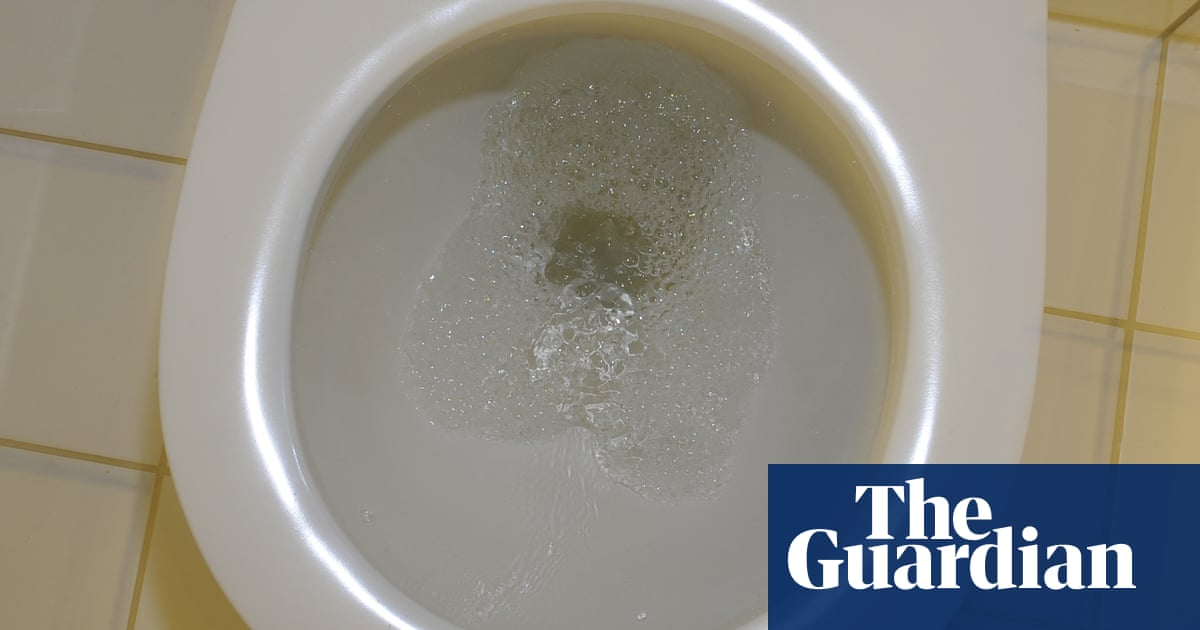 Low risk of catching Covid in public toilets, study finds