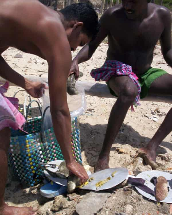 Divers with their catch of sea cucumbers from the Gulf of Mannar.