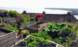 Folkestone, Kent. 'A picture of my husband and daughter hard at work this April. Our community allotment overlooks lovely Folkestone Harbour and Sunny Sands beach.'
