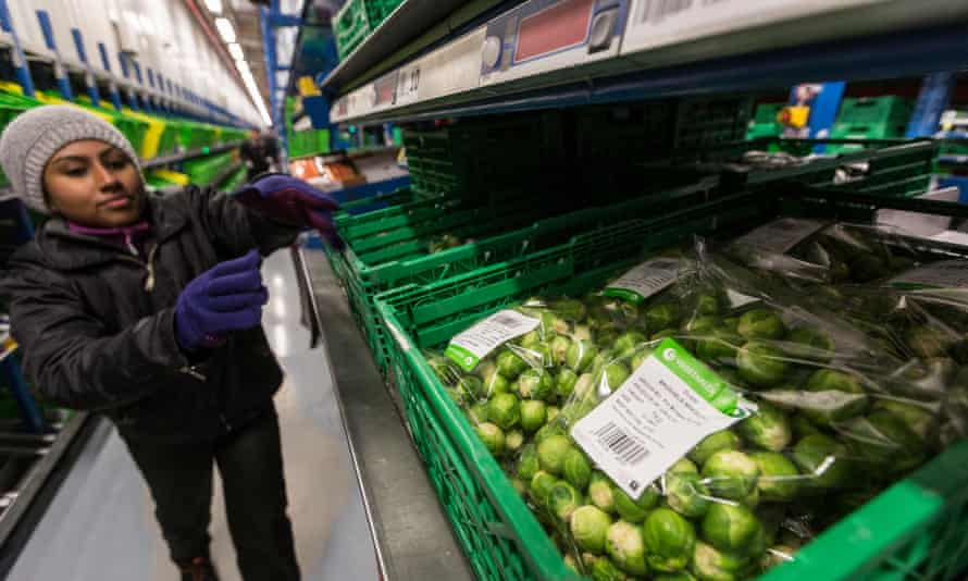A worker in a wooly hat heading down a narrow aisle towards a hopper full of bags of Brussels sprouts