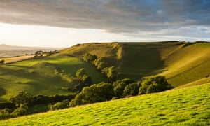 Late afternoon sunshine illuminates the iron age hill fort of Eggardon Hill.