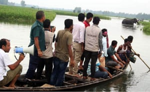 Bangladesh wildlife officials observe a wild elephant at Sarishabari in Jamalpur during a major rescue effort after the elephant was separated from its herd by floods