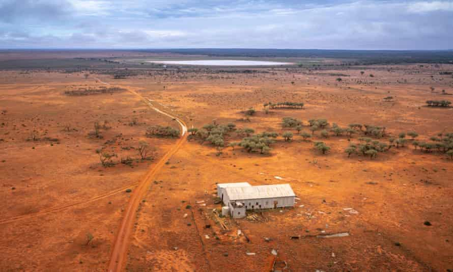 The Langidoon and Metford sheep stations in western NSW – newly procured by the state government for use as a nature reserve – are home to at least 14 threatened species.