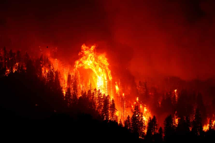 The Dixie fire burns out of control through trees on 16 August, 2021 near Janesville, California.