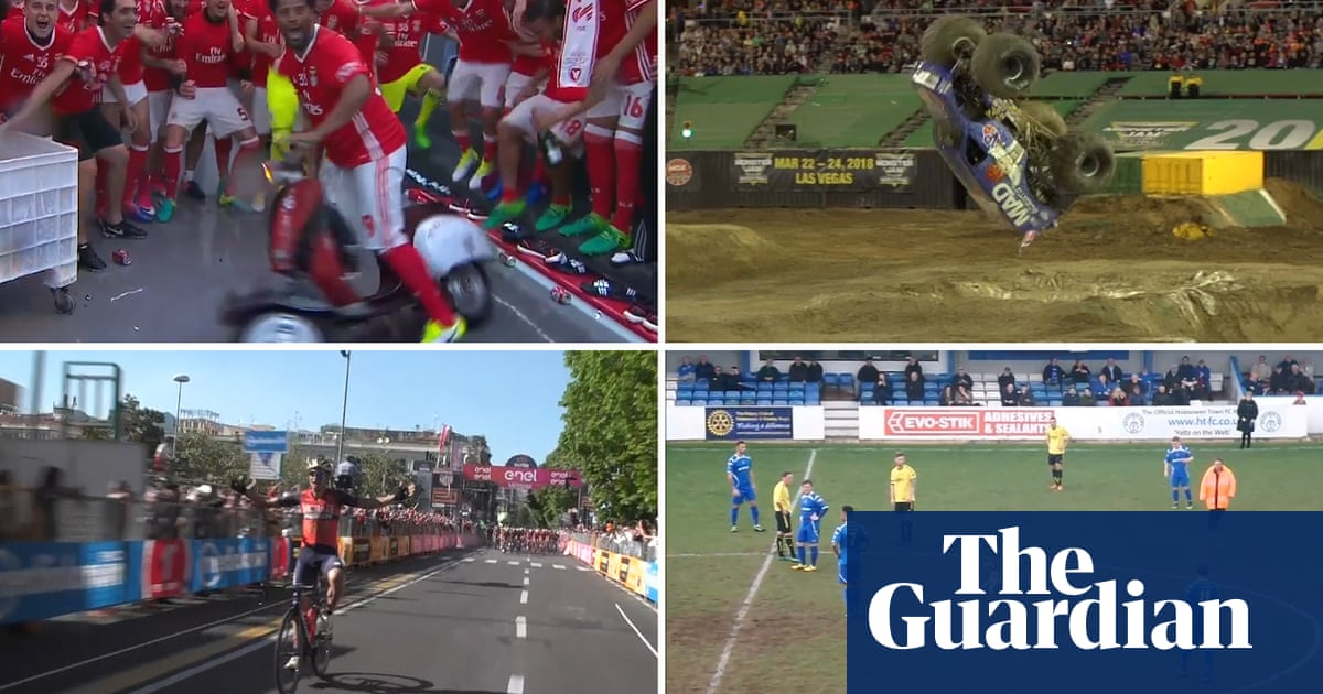 The amazing world of sport in 2017: best viral clips – video review