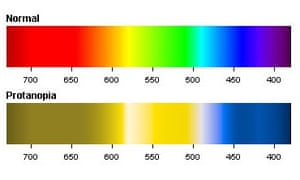 The colour spectrum as seen by those with the colour blindness protanopia