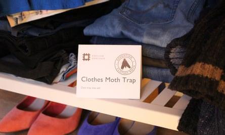 Clothes moth trap.