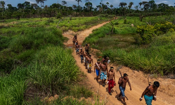 Amazon's indigenous warriors take on invading loggers and ranchers | Brazil | The Guardian