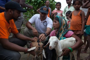 World Animal Protection disaster response team are in the flooded areas of Nepal.