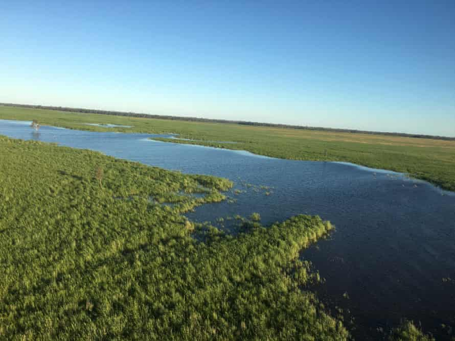 The Great Cumbung Swamp in the Murray-Darling Basin in western NSW.
