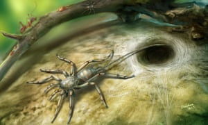 Scientists say the spiders were a missing link between the even more ancient uraraneids and primitive living spiders.