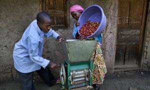 Coffee farmers in Kasese, Uganda use a hand cranked coffee cherry pulper machine