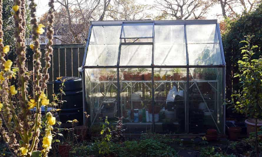 Phil Gates's creaky, leaky greenhouse.