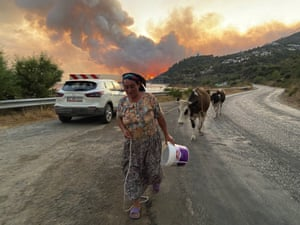 Bodrum, TurkeyA villager leads her cows away from advancing flames near the settlement of Cokertme. Turkish firefighters continue to battle fires that are tearing through forests near the country's beach resorts.