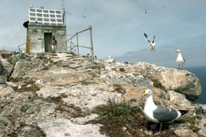 The US Fish and Wildlife service has a plan to drop tons of poison pellets on the Farallon Islands to solve the mouse infestation.