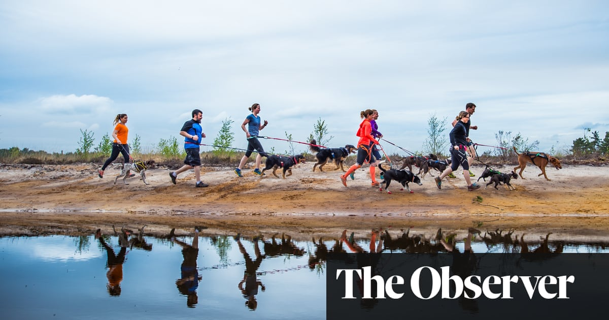 Taking the lead: why a jog with a dog is the latest fitness craze