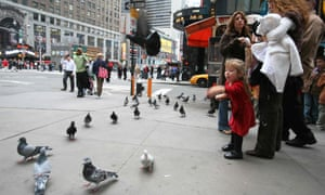 A study in Manhattan found that lead levels in pigeons' blood were linked to the rate of children with raised blood lead levels.