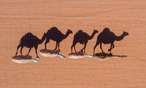 Rumah, Saudi Arabia Annual King Abdulaziz Camel Festival