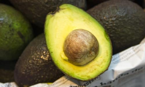 Rising avocado prices fuelling illegal deforestation in
