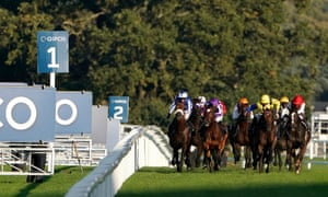 Donnacha O'Brien rides Magical (purple colours) to success in the Champion Stakes at Ascot.