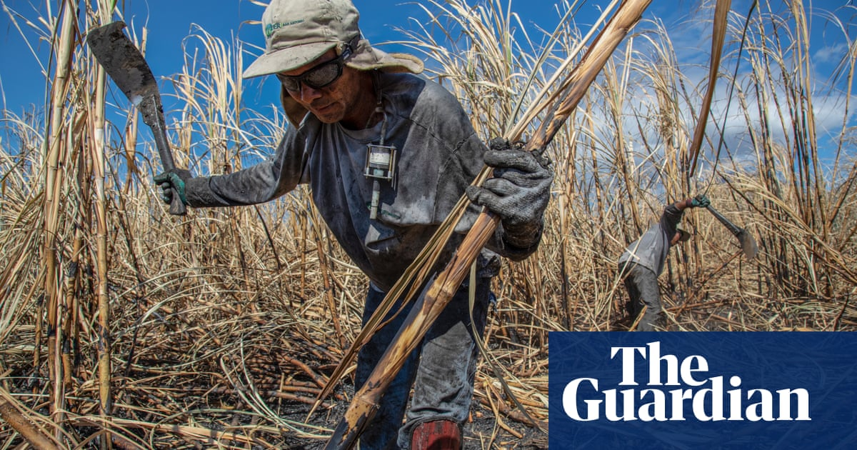 Deadly heat: how rising temperatures threaten workers from Nicaragua to Nepal
