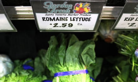 Romaine lettuce displayed on a shelf at a supermarket on 23 April in San Rafael, California. The current E coli outbreak is focused on produce grown in Yuma, Arizona.