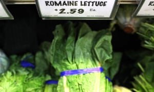 The outbreak has been blamed on tainted lettuce grown in Yuma, Arizona.
