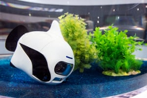 Robosea's Biki drone swims in a tank