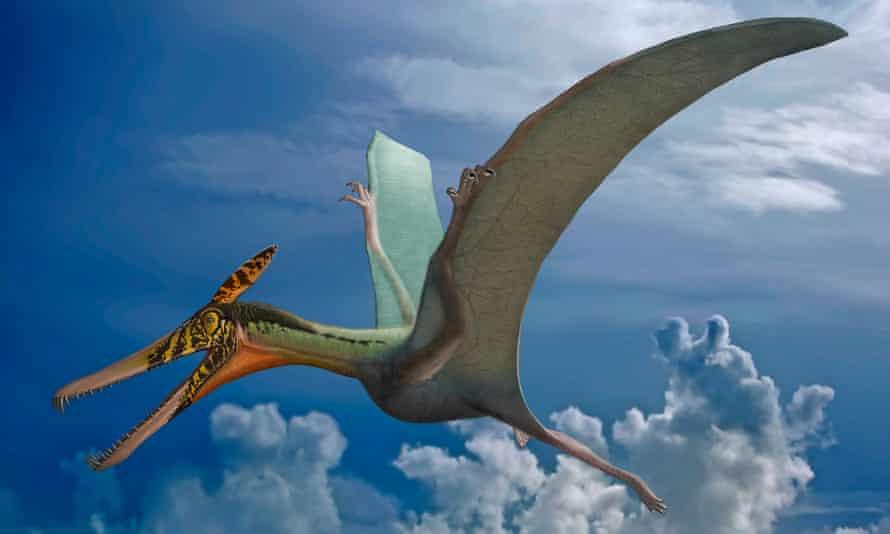 Artist's impression of Ludodactylus sibbicki, a pterosaur.