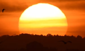 Australia is having an extreme heatwave, with daytime maximum temperatures forecast to extend up to the mid-40s in parts of South Australia, Victoria and NSW