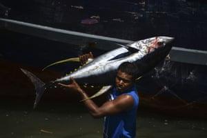 Banda Aceh, Indonesia A fisherman unloads a yellowfin tuna on his return from the sea