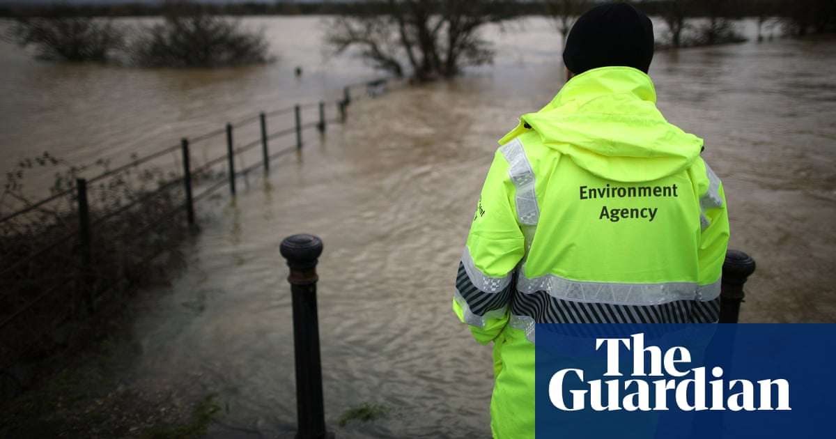 MPs condemn raid on hundreds of environment staff to work on Brexit