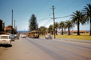Trams on Bondi Road, with Waverley Park to the right