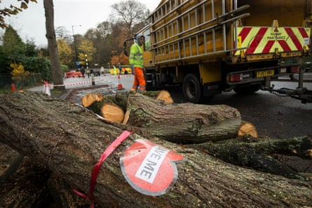 A sign on a tree cut down by contractors in Rustlings Road, Sheffield.