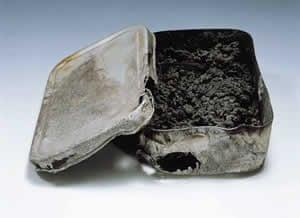 Shigeru Orimen's lunchbox