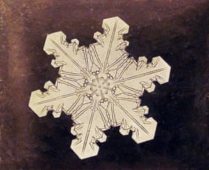 Bentley's Study of a Snowflake, circa 1890-1903, was from the first series of snowflakes ever captured under a microsope.