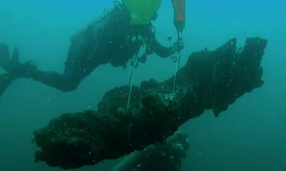 Divers bring a stump to the surface from the seafloor in the underwater forest.