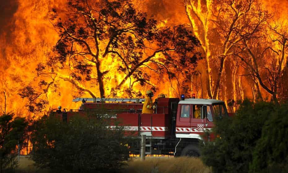 A CFA fire truck battles a bushfire in Victoria's Bunyip State Forest near the township of Tonimbuk