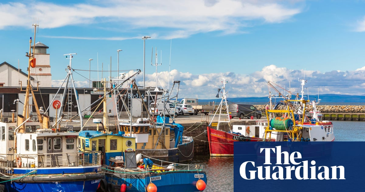 Clyde's fish stocks start to recover – with a different fish than before