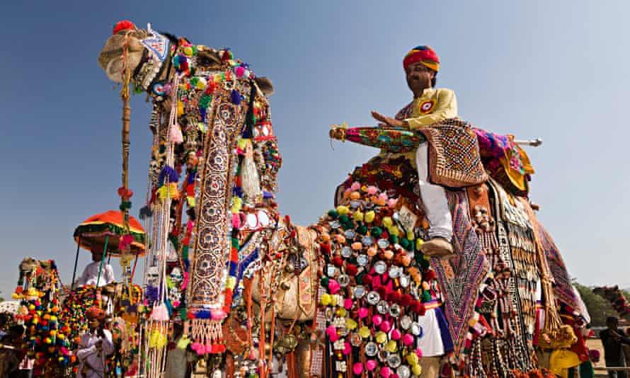Decorated camel at the Pushkar camel fair, India.