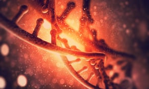 Instead of cutting right through the double strand of the DNA helix like Crispr, the new technique changes single letters, or bases, of the G, T, A and C that make up the genetic code.