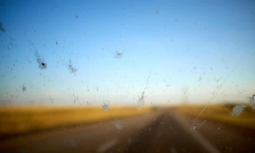 Dead insects on a car windshield in Wyoming, US