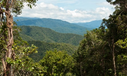 Tamarau mountains in New Guinea, one of the few places left whe