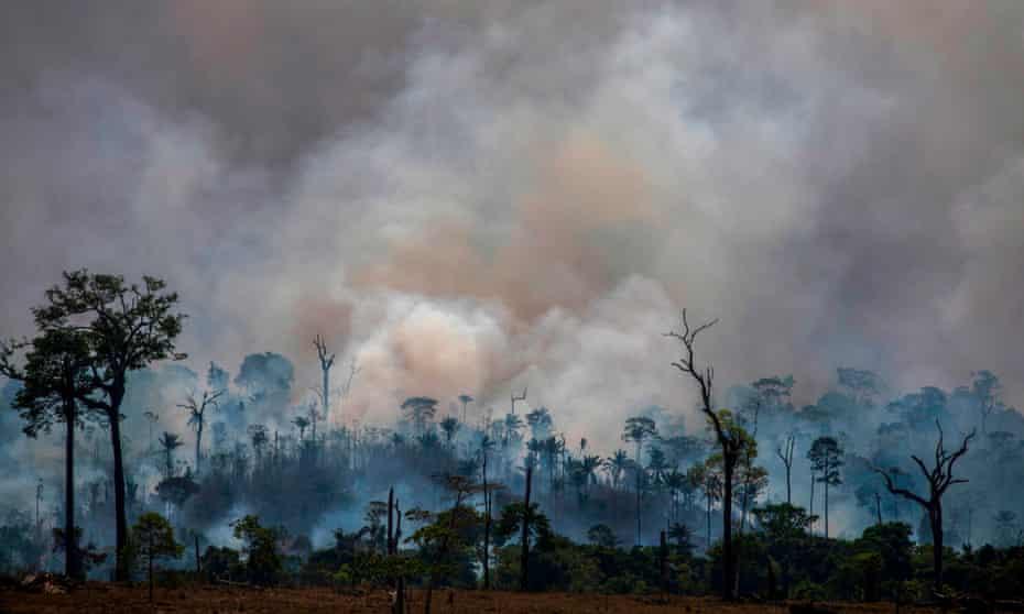 Forest fires in Altamira, Para state, Brazil.