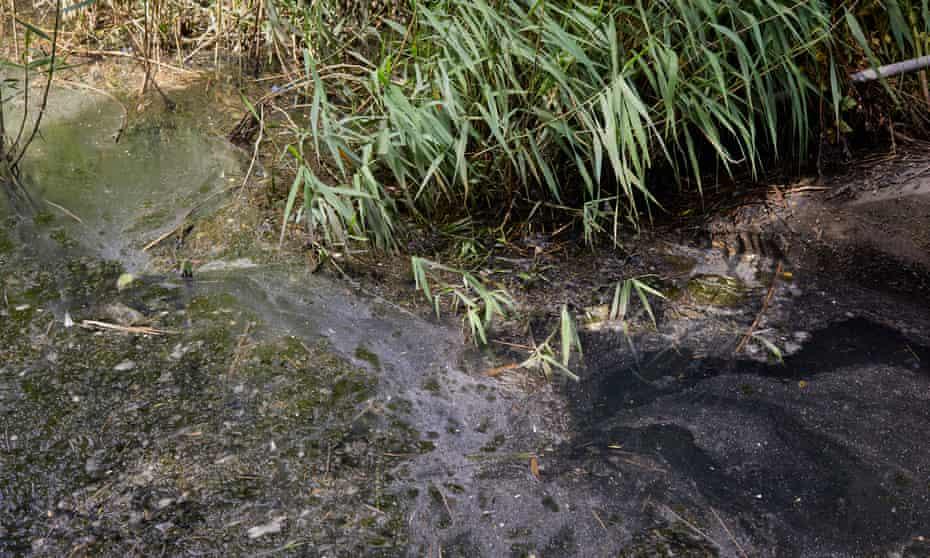 Raw sewage discharge